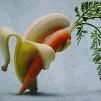 Bananacarrot