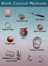 Blog 1 birth_control_methods(3)(1)