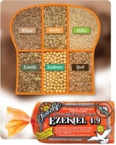 FD Ezekiel49